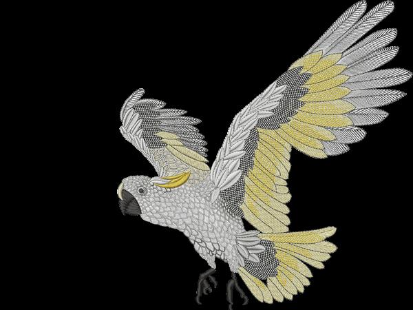My Editor bird